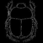 Scarab Logo Icon